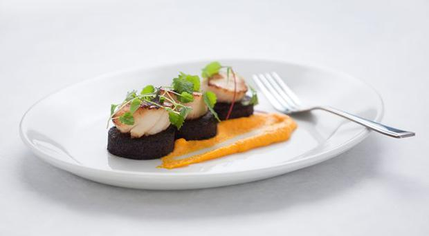 Recipe: Pan-fried scallops with black pudding and carrot ...