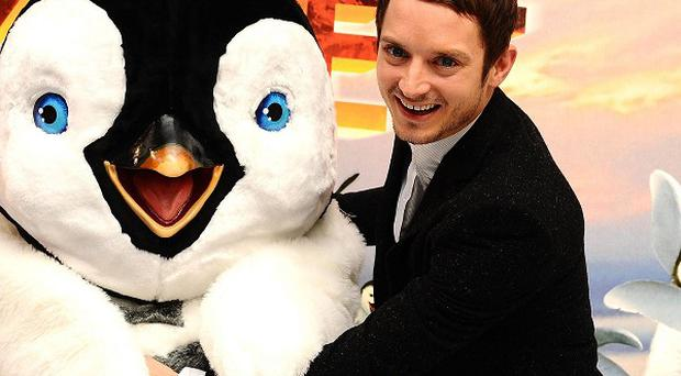 Elijah Wood goes from child to parent in the Happy Feet sequel