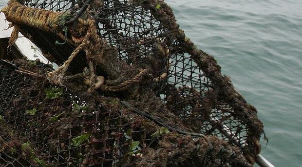 A tag from a lobster pot swept off the US sea floor two decades ago has washed up 3,000 miles away in Ireland
