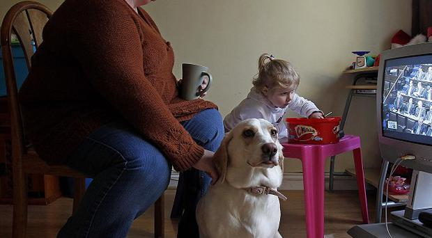 Separated Mother-of-four, Glynnis Curtis with her four-year-old daughter Zowie Ann and family pet Bessie