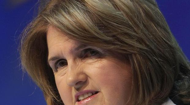 Minister for Social Protection Joan Burton gives her reaction to the Budget at a press conference in Government Buildings