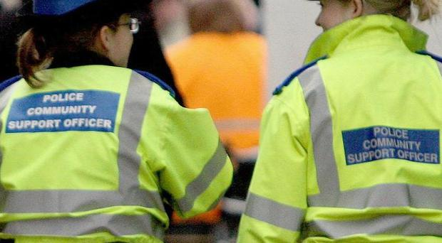 A man has been given a two-month Community Order after he assaulted a female Police Community Support Officer