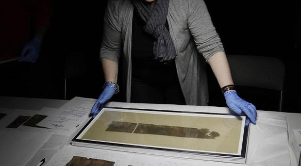 Israel Antiquities Department conservator Tatiana Treiger unwraps a portion of the Dead Sea Scrolls (AP)