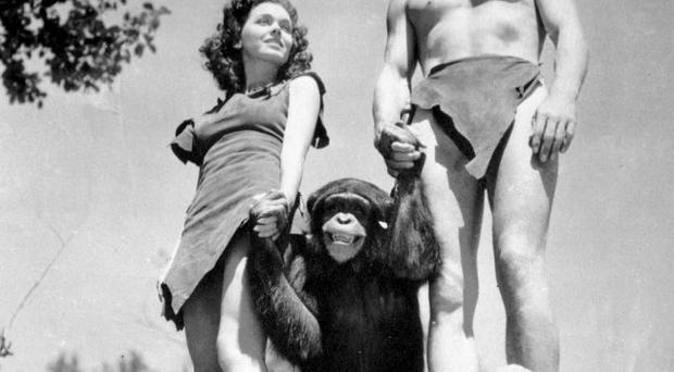 Johnny Weissmuller, right, as Tarzan, Maureen O'Sullivan as Jane, and Cheetah the chimpanzee, in a scene from the 1932 movie Tarzan the Ape Man.