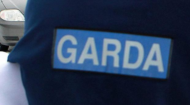 Gardai appealed for information after two pedestrians died in separate road accidents