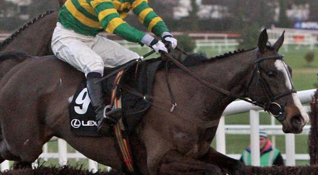 Synchronised en route to Lexus Chase glory