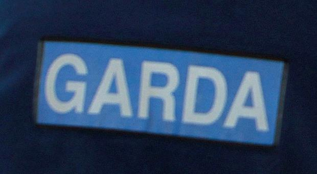Gardai have appealed for witnesses after a pensioner died in a car crash