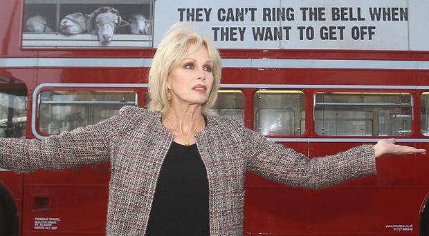 Joanna Lumley launches the campaign to end long distance animal transportation