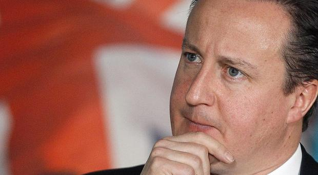 David Cameron said any new treaty should be about fiscal union and not the single market