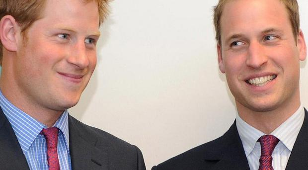 Princes William and Harry are supporting the Forces in Mind Trust, which has been set up to help soldiers make a successful transition to civilian life