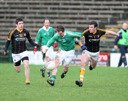 Eamon Maguire shows the determination needed if Fermanagh are to make an impression in the Dr McKenna Cup