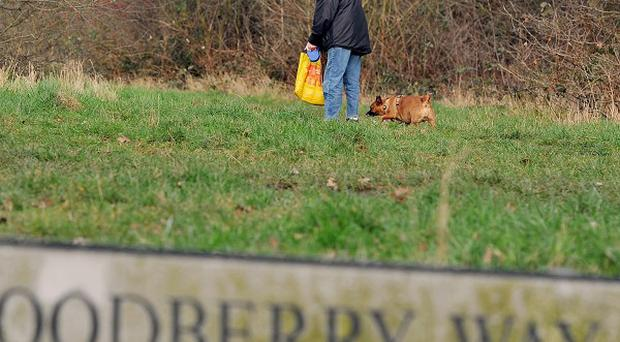 A woman walks her dog at the top of Woodberry Way in Chingford, London, near the spot where a dog attacked a six-year-old girl