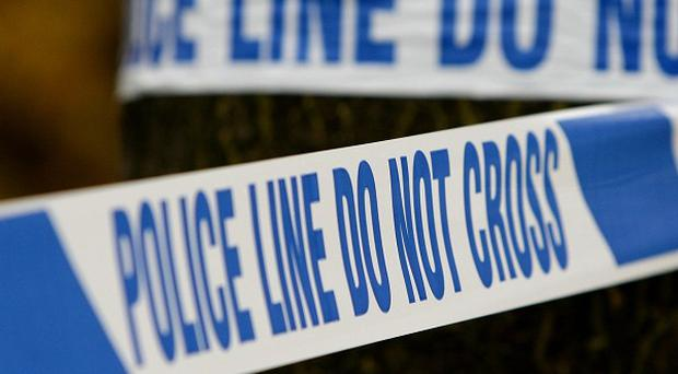 An eight-year-old girl has been injured after a brick was thrown through a window at a house in Dundonald