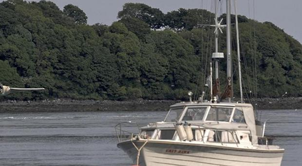 The Ulster Wildlife Trust has urged the Stormont Executive to properly protect Strangford Lough