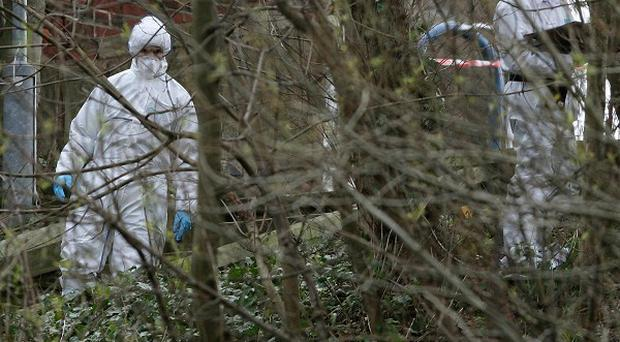 Police forensic officers search through undergrowth in Stockport