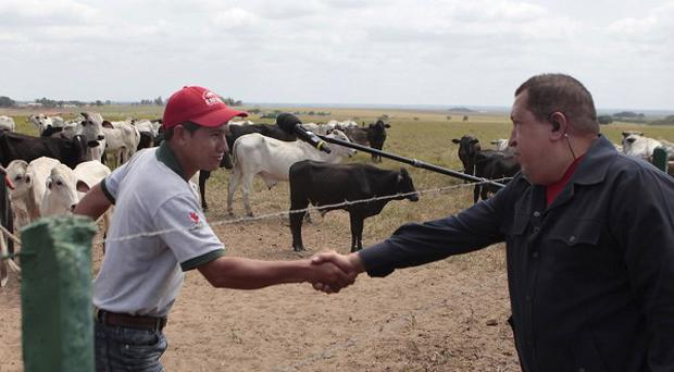 Hugo Chavez shakes hands with a rural worker in Santa Barbara, Barinas State, Venezuela (AP)