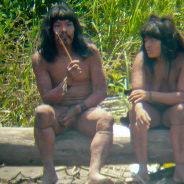 The team trying to locate the Mashco-Piro people includes anthropologists and conflict managers in an effort to prevent more contact and violence. Above: Members of the Mashco-Piro tribe in the Peruvian rainforest