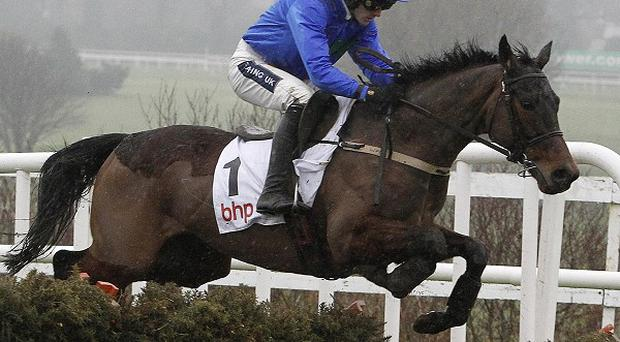 Hurricane Fly wins at Leopardstown