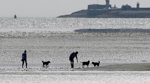 January has brought the warmest new year for at least five years to all parts of the country, new figures showed
