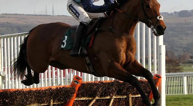 Ruby Walsh on Pearl Swan at Cheltenham