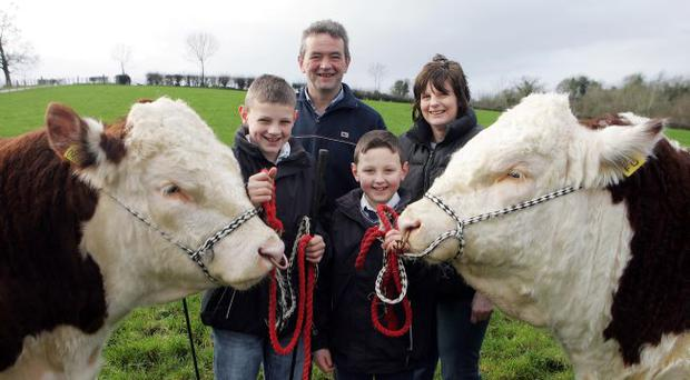 Field of dreams: David and Cindy Wilson with sons Jack and Robbie on the family farm
