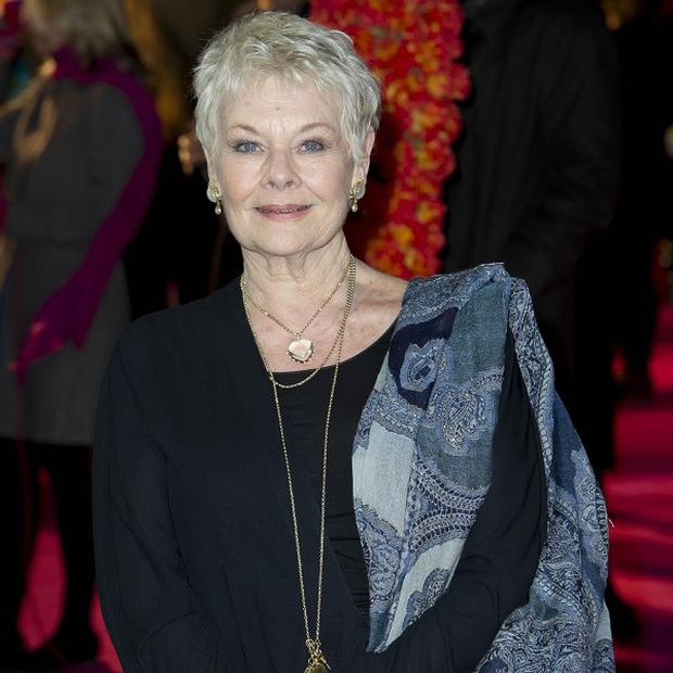 Judi Dench stars in new film The Best Exotic Marigold Hotel