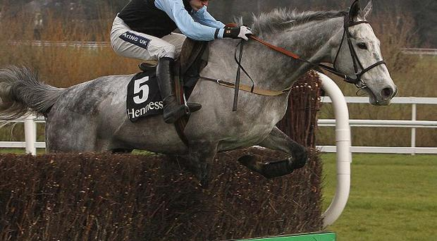 Another fine leap from Quel Esprit at the final fence