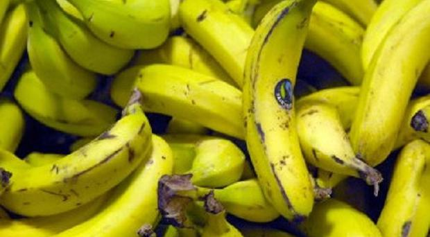 A dead rat was found in a bag of bananas