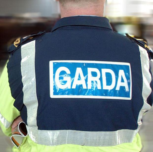 Gardai believe the human remains are of a man who was fleeing police custody