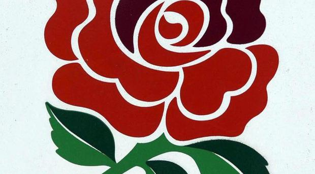 England Red Rose badge
