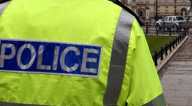 Plans are reportedly being considered which would see private companies patrol neighbourhoods instead of police