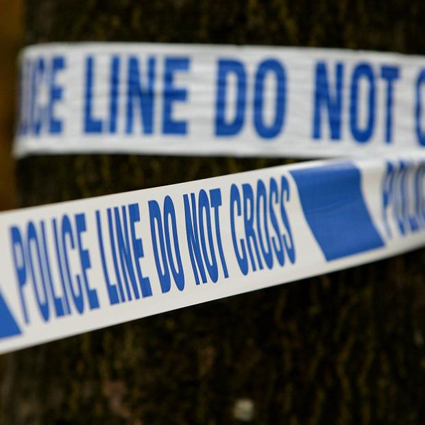 Police are hunting a gang who slashed a man across the stomach in Co Down