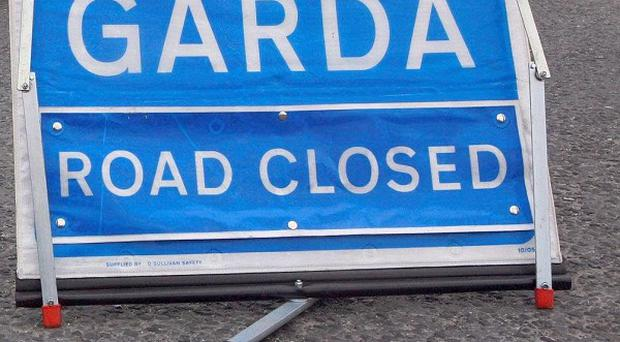 A pedestrian has died after being hit by a mini-bus in Co Louth
