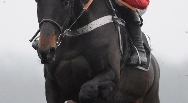 Barry Geraghty and Sprinter Sacre are proving a facourite with punters