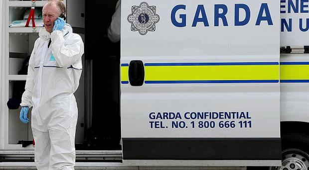 Gardai appealed for witnesses after an explosive device was thrown at a house in south Dublin