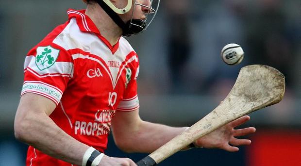 Firm pointer: Liam Watson's scoring can boost Loughgiel