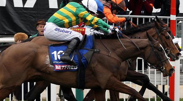Synchronised ridden by Tony McCoy (white cap) goes on to win the Cheltenham Gold Cup