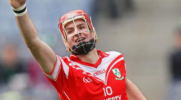 On target: Loughgiel's Liam Watson dominated Sunday's All-Ireland club hurling showpiece