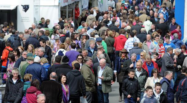 The Balmoral Show could be held at the Maze next year