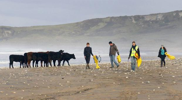Volunteers at Whitepark Bay during the tidy-up session