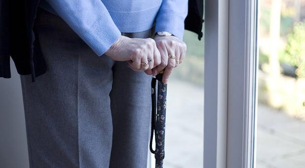 Some elderly patients are missing out on medicines and support that would give them the best chance of beating cancer, a report says