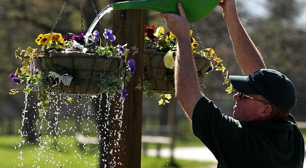 Flowers are watered by Kenny Pratt at Blair Drummond Safari Park near Stirling as the recent good weather continues