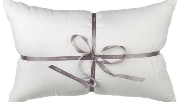 <b>1. John Lewis Winter Snow Goose Down</b> £150, johnlewis.com A supremely comfortable pillow using down from geese native to Russia's glacial mountains.