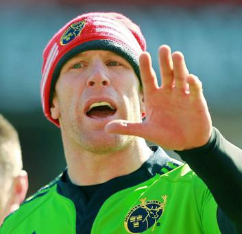 Born leader: Paul O'Connell hopes to stand tall for Munster