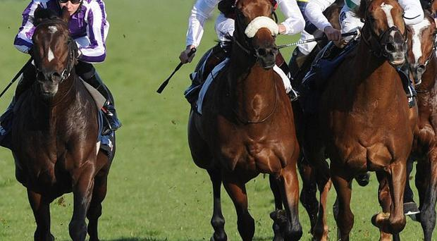 Joseph O'Brien steers Camelot (left) home at Doncaster