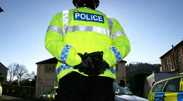 A 16-year-old boy has been arrested over an attack on a 10-year-old girl