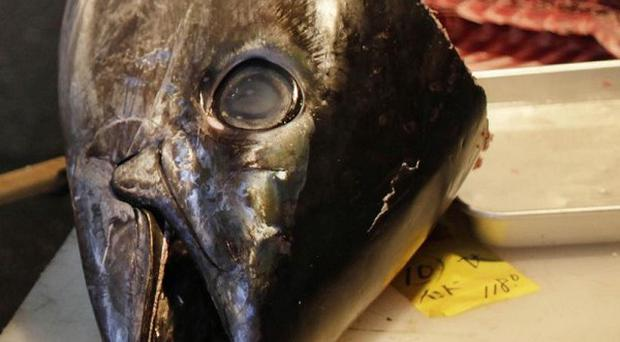 Some 58,828lbs of frozen raw yellowfin tuna is being recalled in the US (AP Photo/David Guttenfelder)