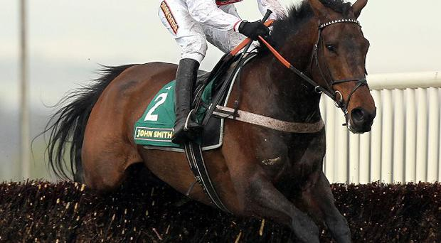 Finian's Rainbow puts in a good jump at the last