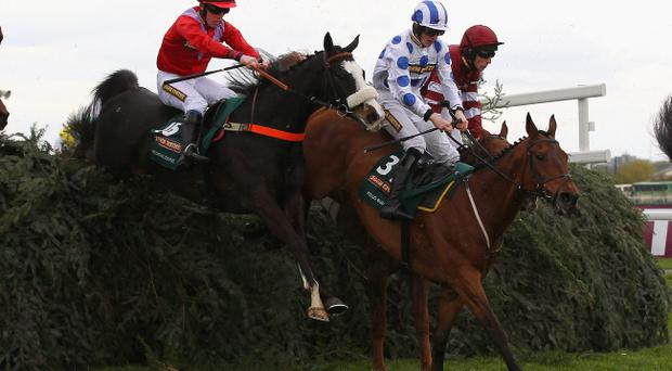According To Pete (left) suffered fatal injuries during the Grand National