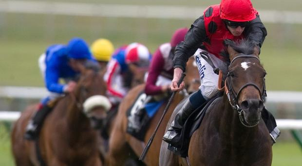 Trumpet Major wins at Newmarket yesterday